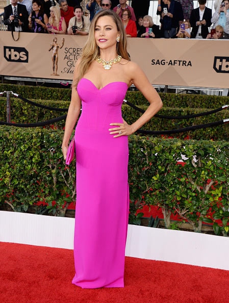 LOS ANGELES, CA - JANUARY 30: Actress Sofia Vergara attends the 22nd Annual Screen Actors Guild Awards at The Shrine Auditorium on January 30, 2016 in Los Angeles, California. (Photo by Jeff Kravitz/FilmMagic)