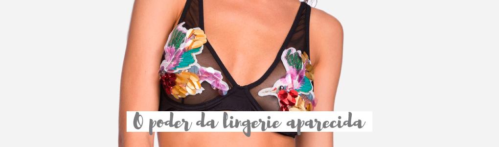 O poder da lingerie aparecida
